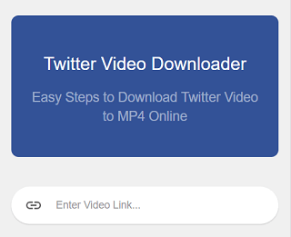 Paste the video URL